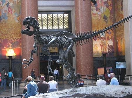 American-Museum-of-Natural-History-Capitol-Escapes-1